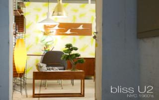3-BLISS-U2-7