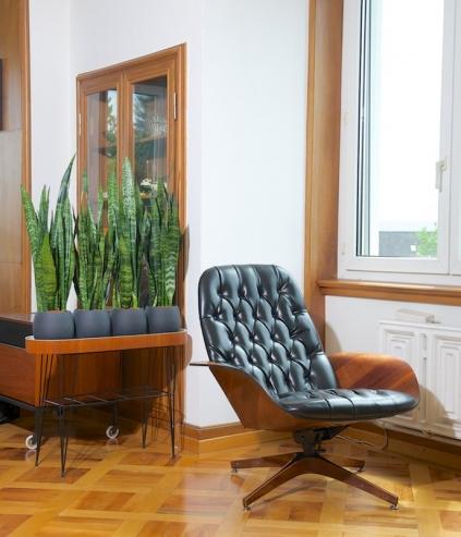 raumtrenner blumenbank teak pergola mit zeitungsablage 1961 bliss modern antiques. Black Bedroom Furniture Sets. Home Design Ideas